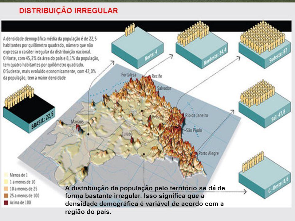 A distribuição da população pelo território se dá de forma bastante irregular. Isso significa que a densidade demográfica é variável de acordo com a r