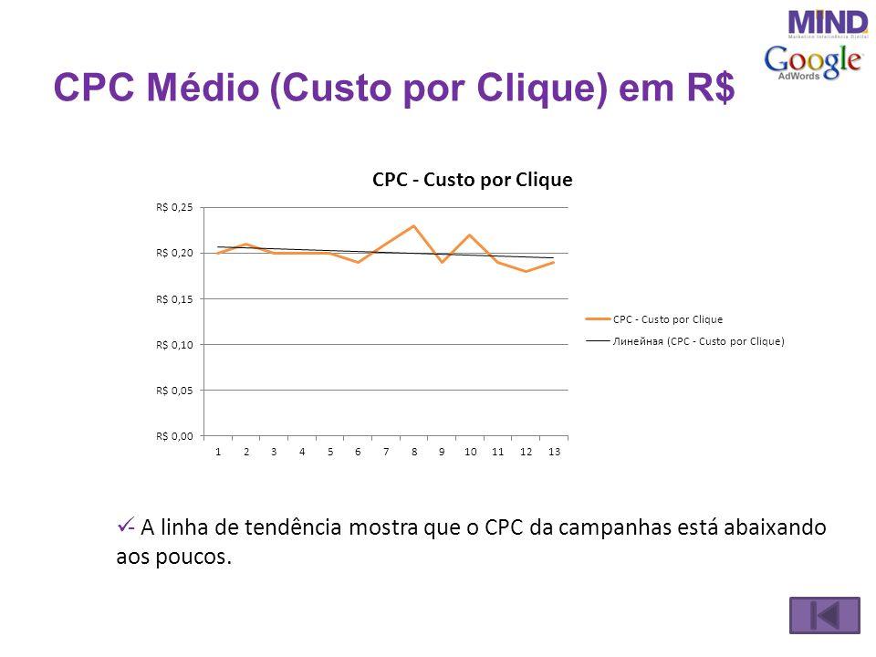 Investimentos na Campanha - No período inteiro investimos R$ 29.200,00.