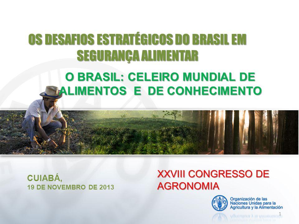 OS DESAFIOS ESTRATÉGICOS DO BRASIL EM SEGURANÇA ALIMENTAR CUIABÁ, 19 DE NOVEMBRO DE 2013 1 XXVIII CONGRESSO DE AGRONOMIA O BRASIL: CELEIRO MUNDIAL DE