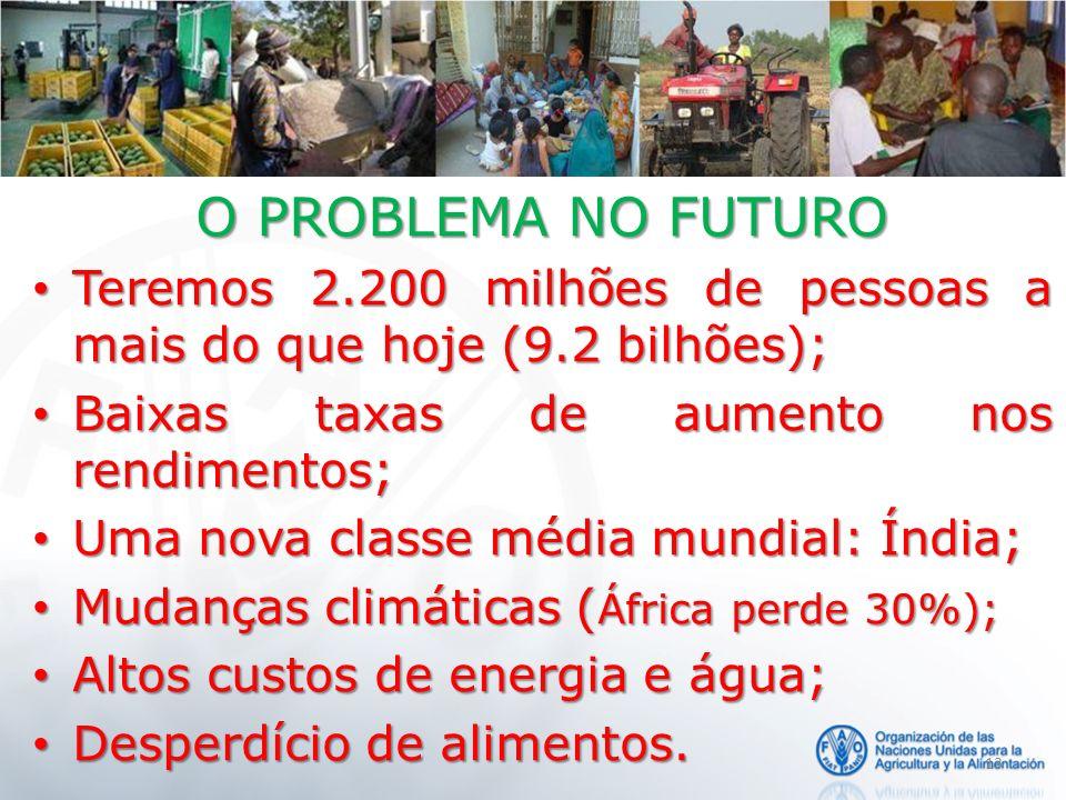 13 O PROBLEMA NO FUTURO Teremos 2.200 milhões de pessoas a mais do que hoje (9.2 bilhões); Teremos 2.200 milhões de pessoas a mais do que hoje (9.2 bi