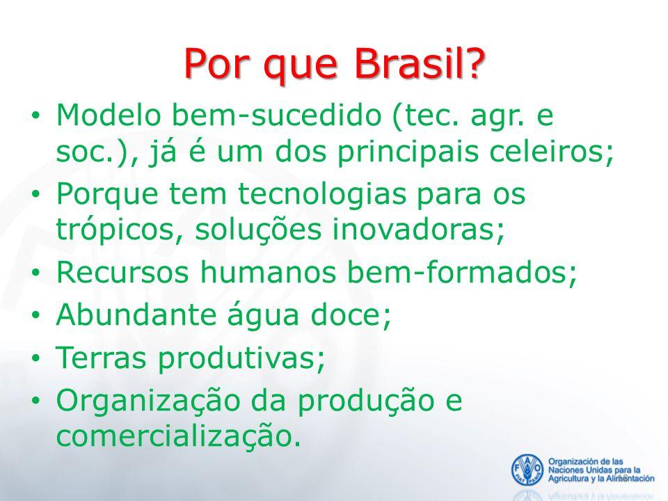 Por que Brasil? Modelo bem-sucedido (tec. agr. e soc.), já é um dos principais celeiros; Porque tem tecnologias para os trópicos, soluções inovadoras;