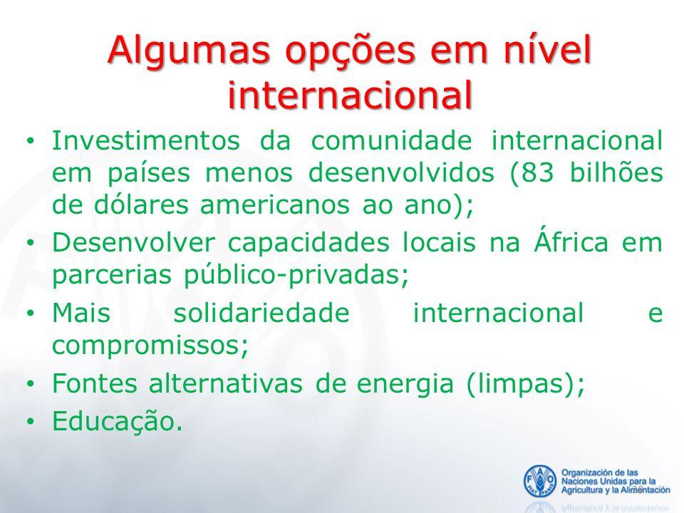Algumas opções em nível internacional Investimentos da comunidade internacional em países menos desenvolvidos (83 bilhões de dólares americanos ao ano