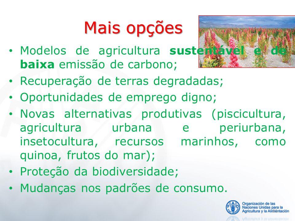 Mais opções Modelos de agricultura sustentável e de baixa emissão de carbono; Recuperação de terras degradadas; Oportunidades de emprego digno; Novas