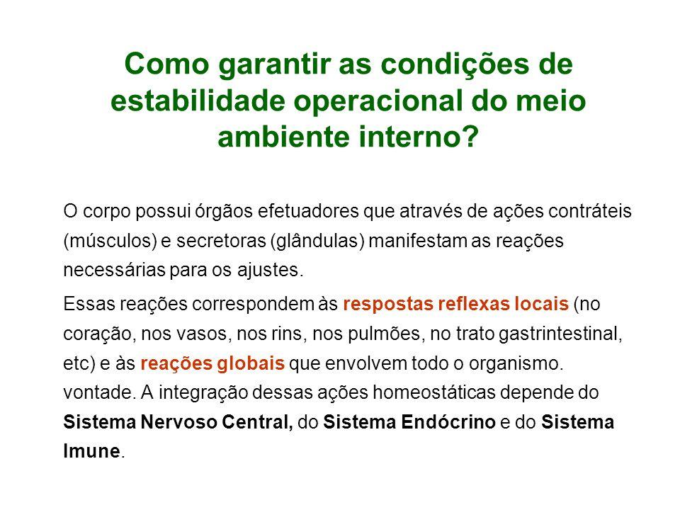 Como garantir as condições de estabilidade operacional do meio ambiente interno.