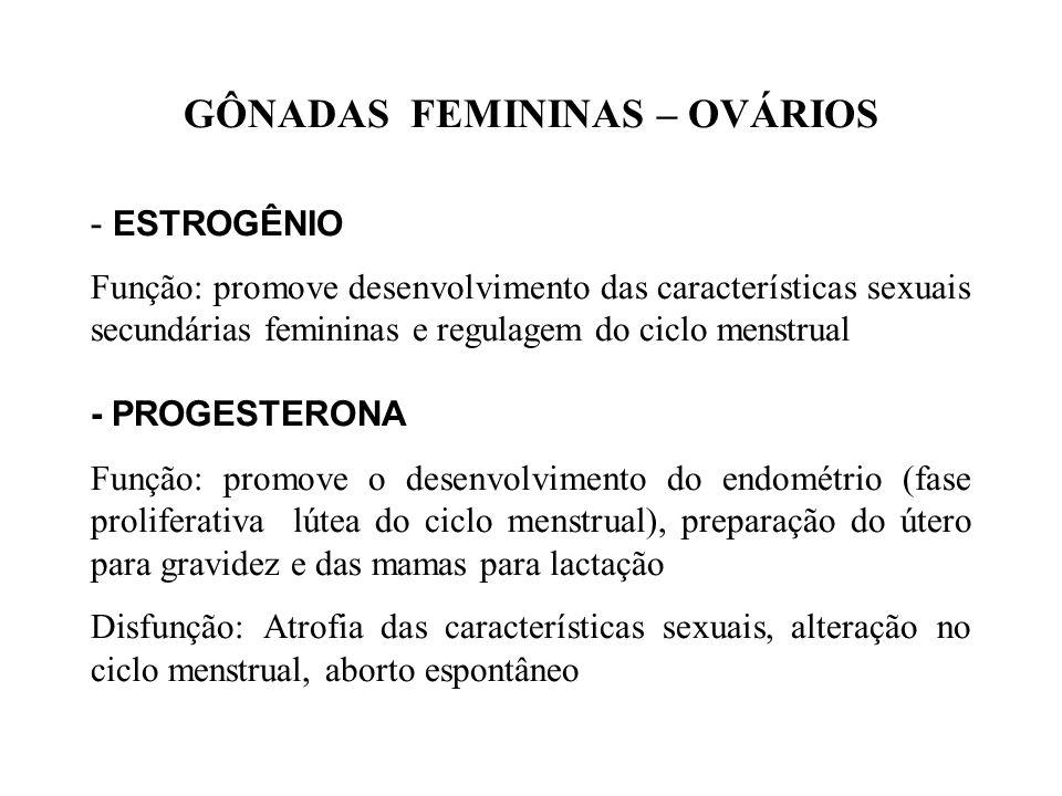 GÔNADAS MASCULINAS e FEMININAS OVÁRIOS TESTÍCULOS