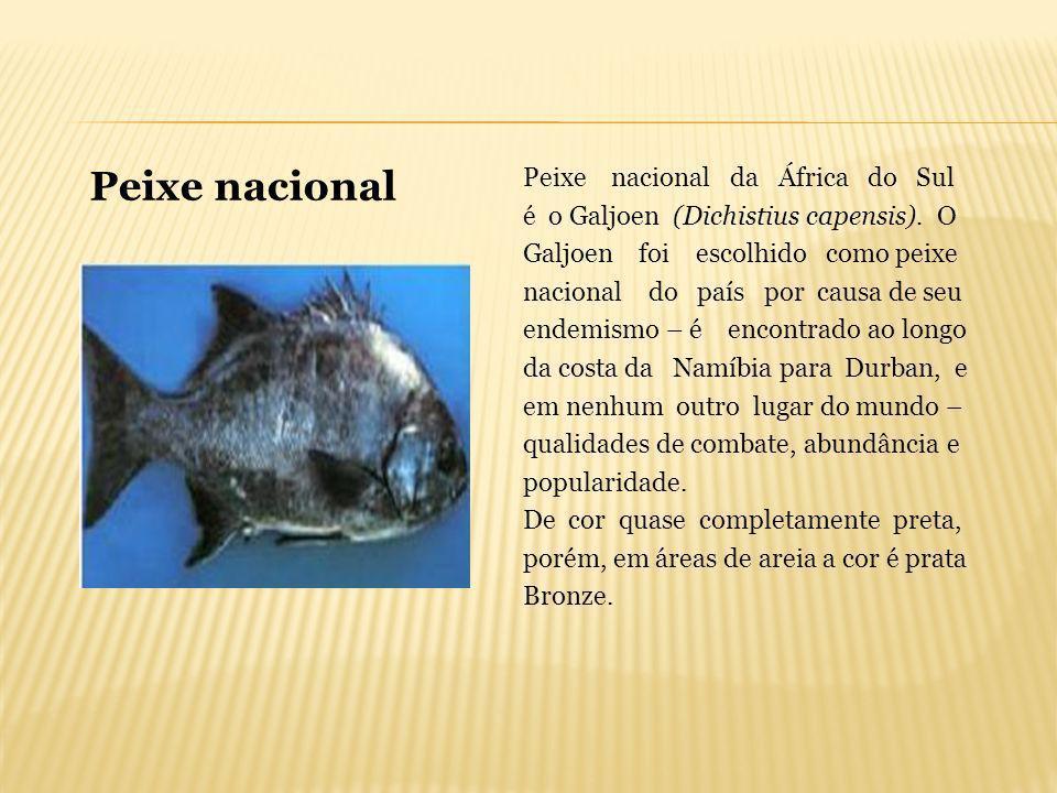 Peixe nacional da África do Sul é o Galjoen (Dichistius capensis). O Galjoen foi escolhido como peixe nacional do país por causa de seu endemismo – é