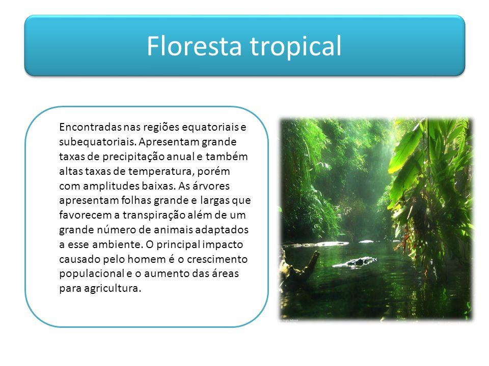 Floresta tropical Encontradas nas regiões equatoriais e subequatoriais. Apresentam grande taxas de precipitação anual e também altas taxas de temperat