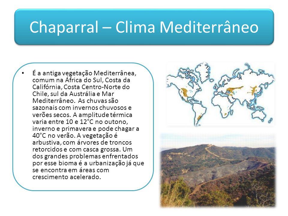 Chaparral – Clima Mediterrâneo É a antiga vegetação Mediterrânea, comum na África do Sul, Costa da Califórnia, Costa Centro-Norte do Chile, sul da Austrália e Mar Mediterrâneo.