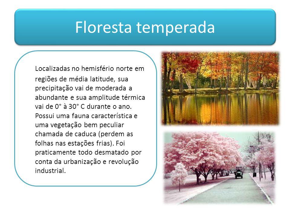 Floresta temperada Localizadas no hemisfério norte em regiões de média latitude, sua precipitação vai de moderada a abundante e sua amplitude térmica vai de 0° à 30° C durante o ano.