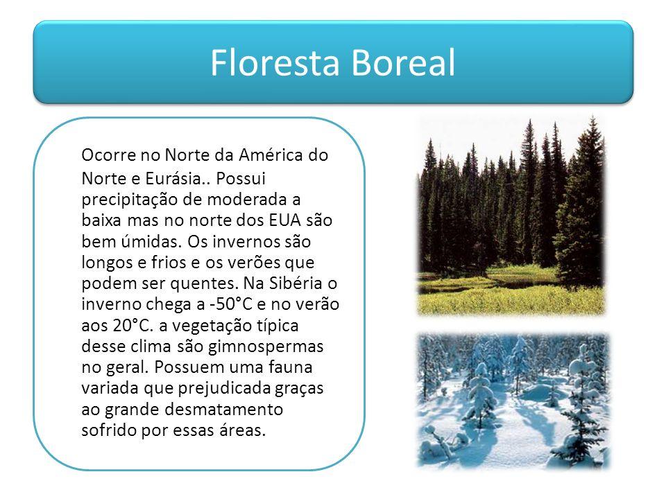 Floresta Boreal Ocorre no Norte da América do Norte e Eurásia.. Possui precipitação de moderada a baixa mas no norte dos EUA são bem úmidas. Os invern