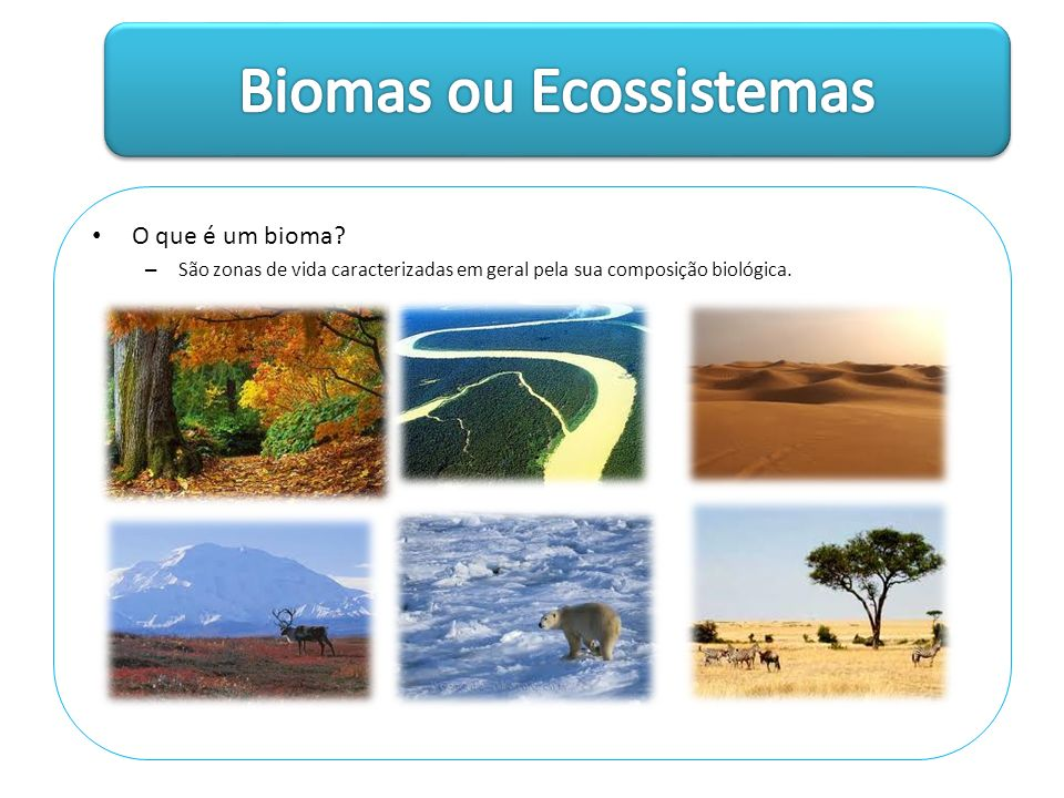 Biomas aquáticos – Maior em termo de área; – Classificados pela concentração salina: >0,1% água doce.