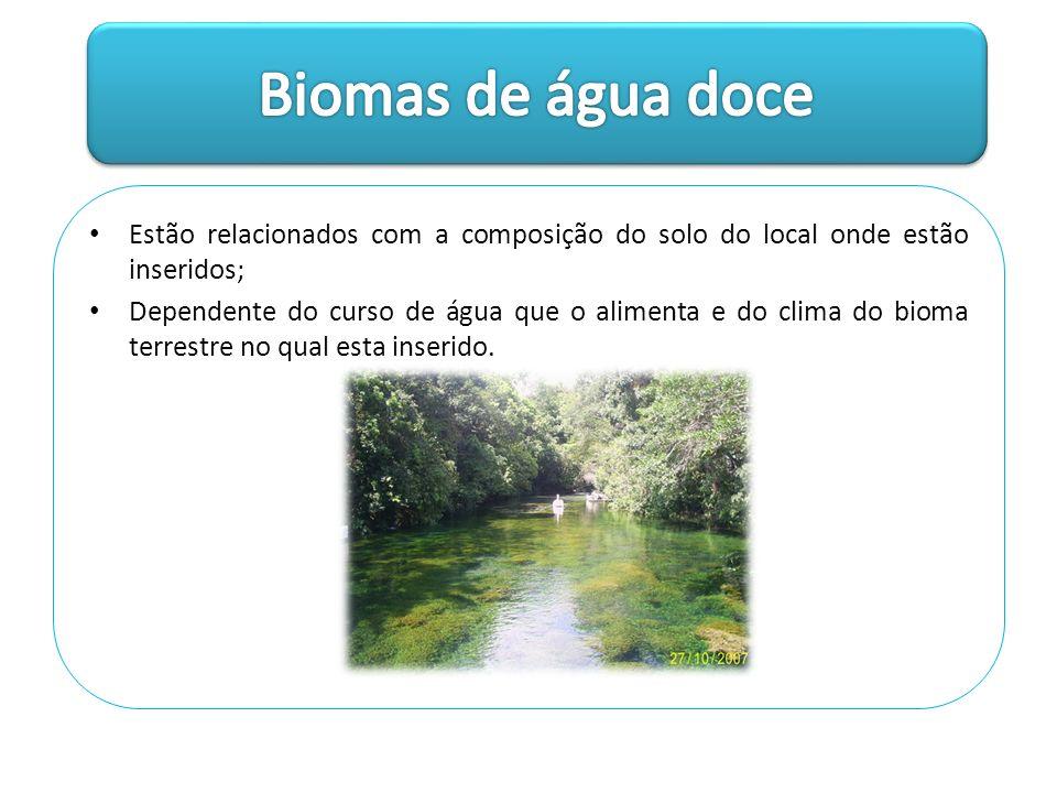 Estão relacionados com a composição do solo do local onde estão inseridos; Dependente do curso de água que o alimenta e do clima do bioma terrestre no