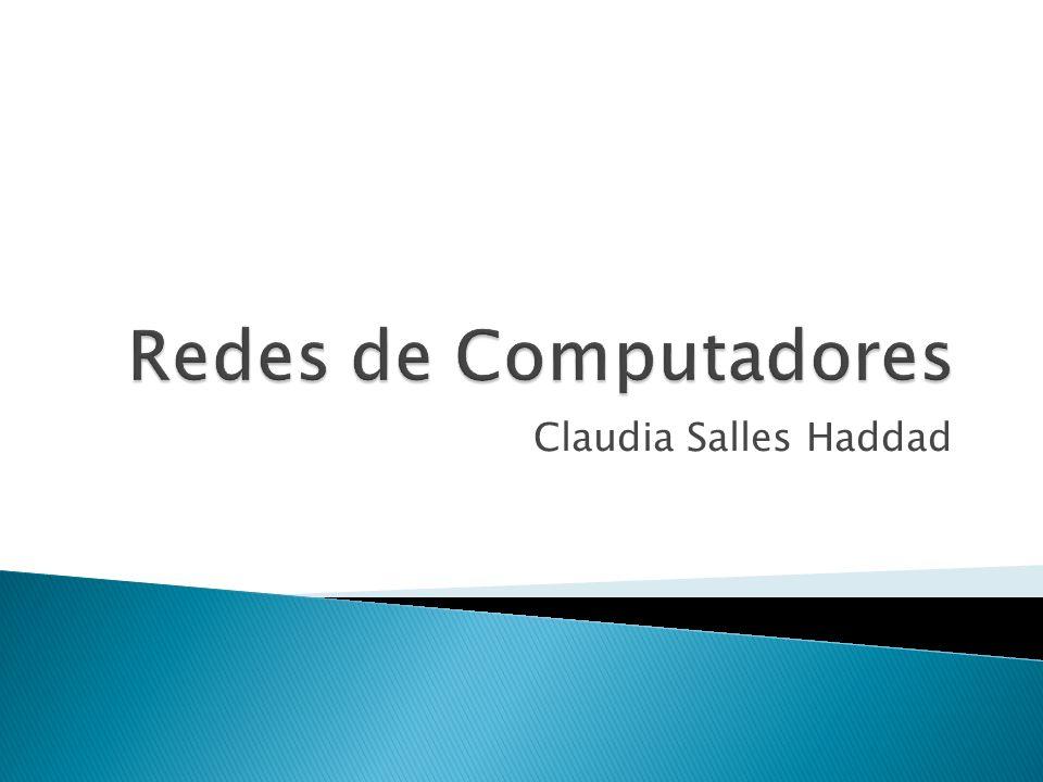 Claudia Salles Haddad