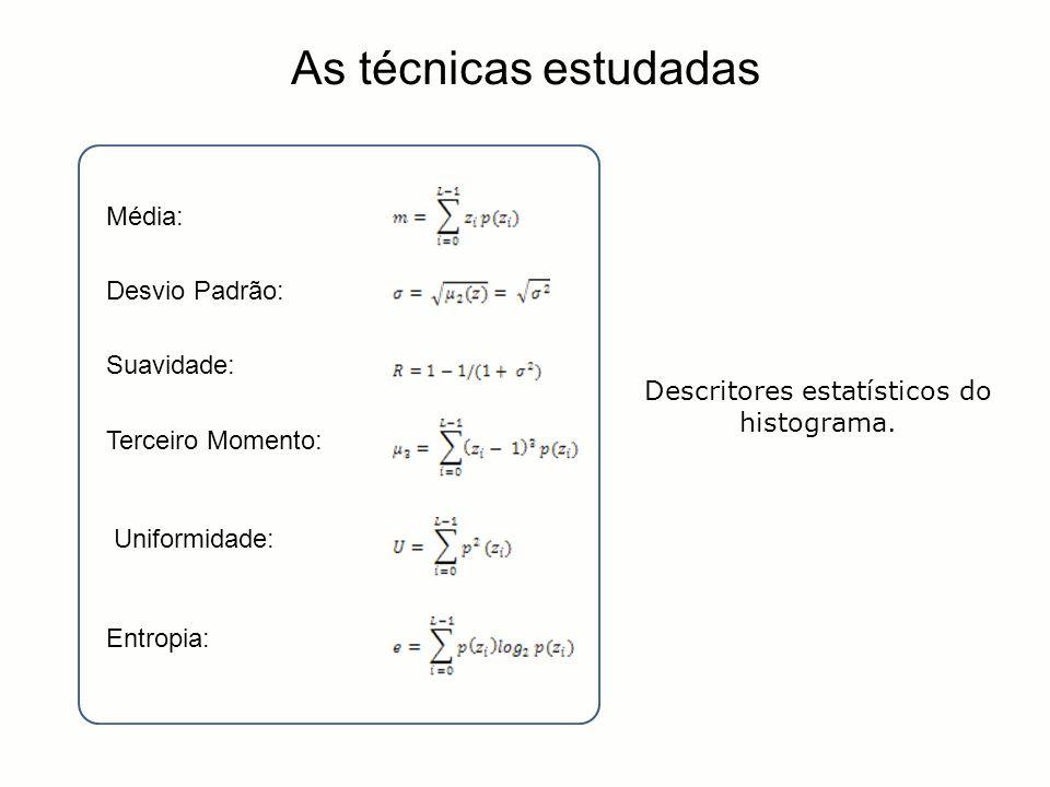 Média: Desvio Padrão: Suavidade: Terceiro Momento: Uniformidade: Entropia: As técnicas estudadas Descritores estatísticos do histograma.