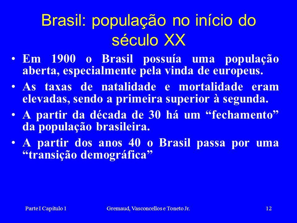 Parte I Capítulo 1Gremaud, Vasconcellos e Toneto Jr.12 Brasil: população no início do século XX Em 1900 o Brasil possuía uma população aberta, especialmente pela vinda de europeus.