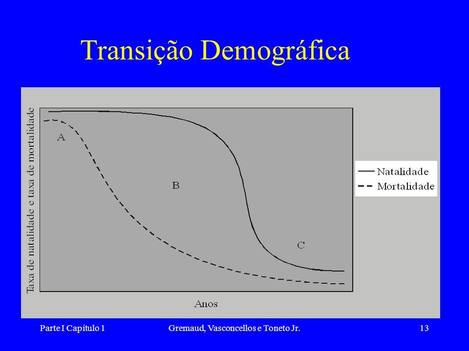 Parte I Capítulo 1Gremaud, Vasconcellos e Toneto Jr.13 Transição Demográfica