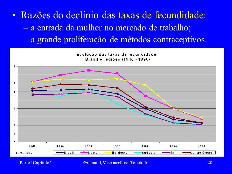 Parte I Capítulo 1Gremaud, Vasconcellos e Toneto Jr.20 Razões do declínio das taxas de fecundidade: –a entrada da mulher no mercado de trabalho; –a grande proliferação de métodos contraceptivos.