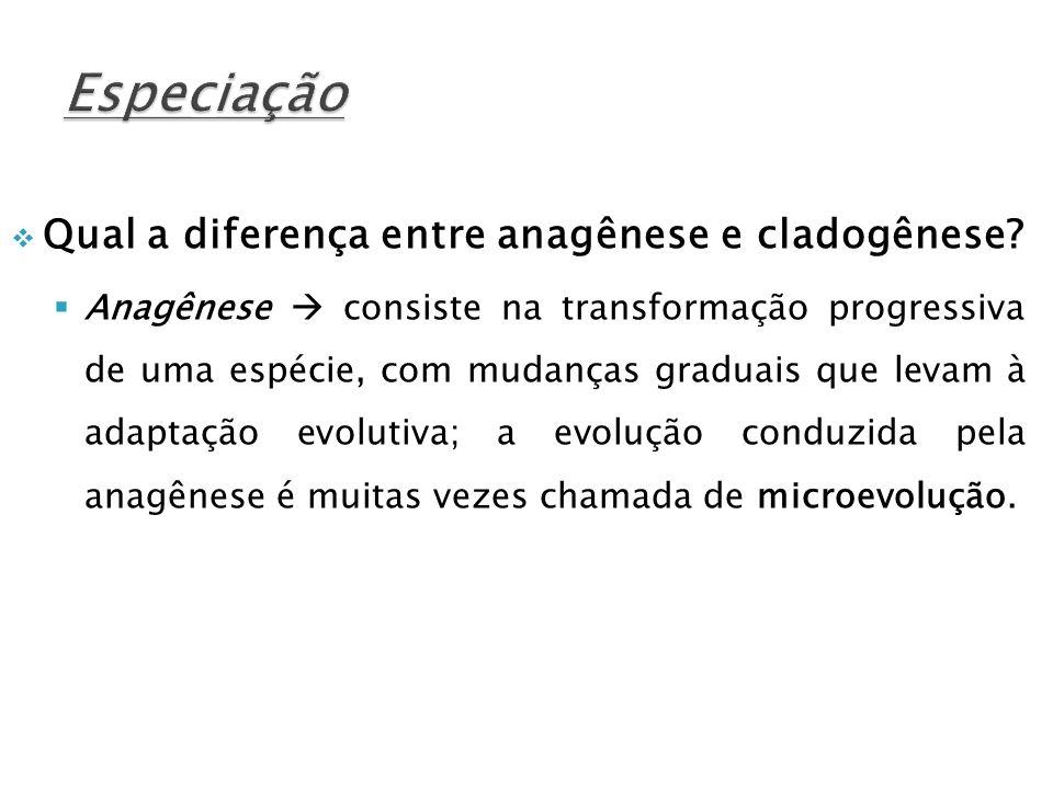 Qual a diferença entre anagênese e cladogênese? Anagênese consiste na transformação progressiva de uma espécie, com mudanças graduais que levam à adap
