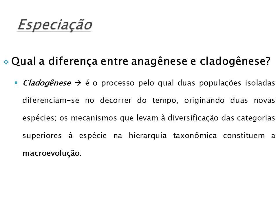 Qual a diferença entre anagênese e cladogênese? Cladogênese é o processo pelo qual duas populações isoladas diferenciam-se no decorrer do tempo, origi
