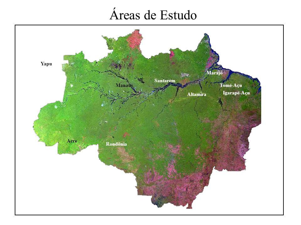 Estratégia Metodológica Planos de informação Machadinho (contexto local) Anari (contexto local) Contexto regional Espaço Tempo Múltiplas áreas Múltiplas datas
