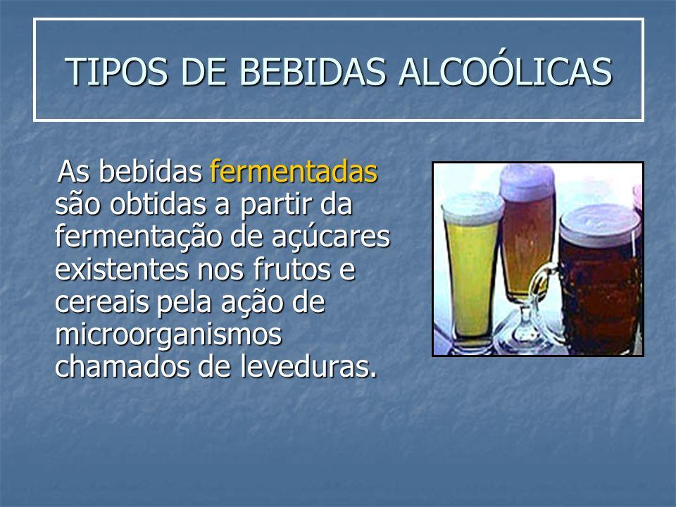 TIPOS DE BEBIDAS ALCOÓLICAS As bebidas fermentadas são obtidas a partir da fermentação de açúcares existentes nos frutos e cereais pela ação de microo