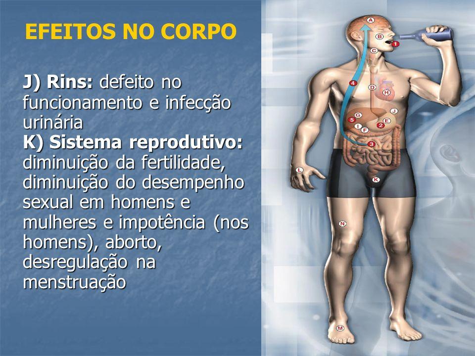 J) Rins: defeito no funcionamento e infecção urinária K) Sistema reprodutivo: diminuição da fertilidade, diminuição do desempenho sexual em homens e m