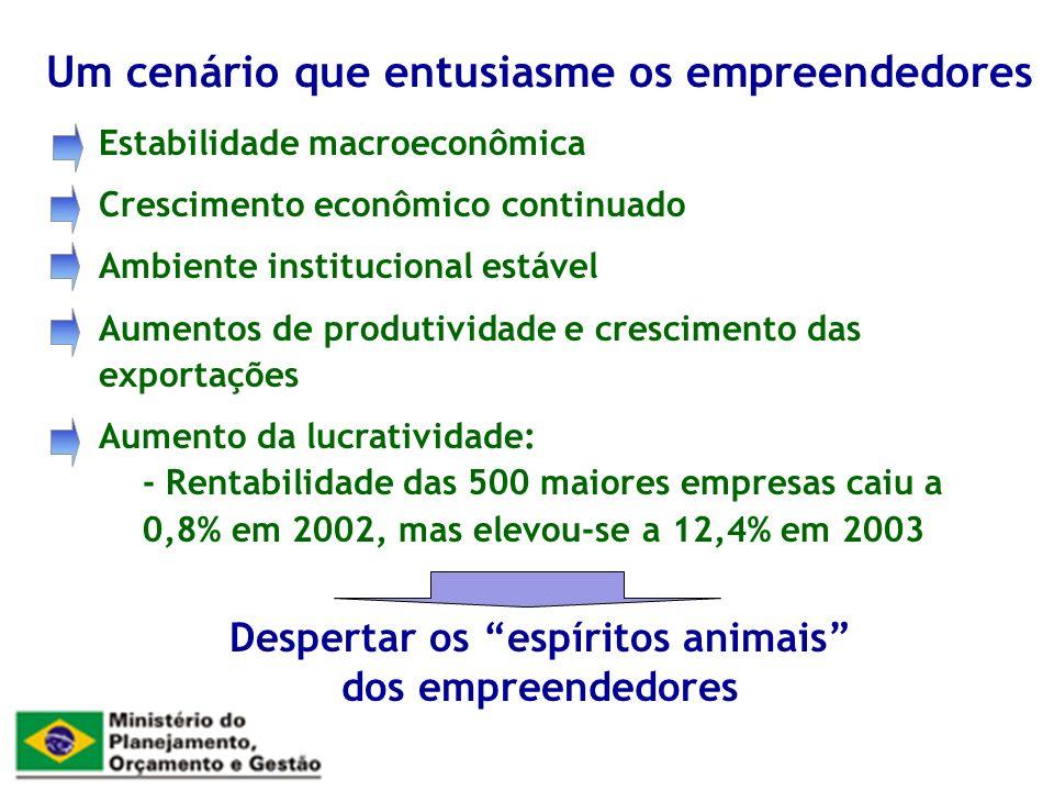 Estabilidade macroeconômica Crescimento econômico continuado Ambiente institucional estável Aumentos de produtividade e crescimento das exportações Aumento da lucratividade: - Rentabilidade das 500 maiores empresas caiu a 0,8% em 2002, mas elevou-se a 12,4% em 2003 Um cenário que entusiasme os empreendedores Despertar os espíritos animais dos empreendedores