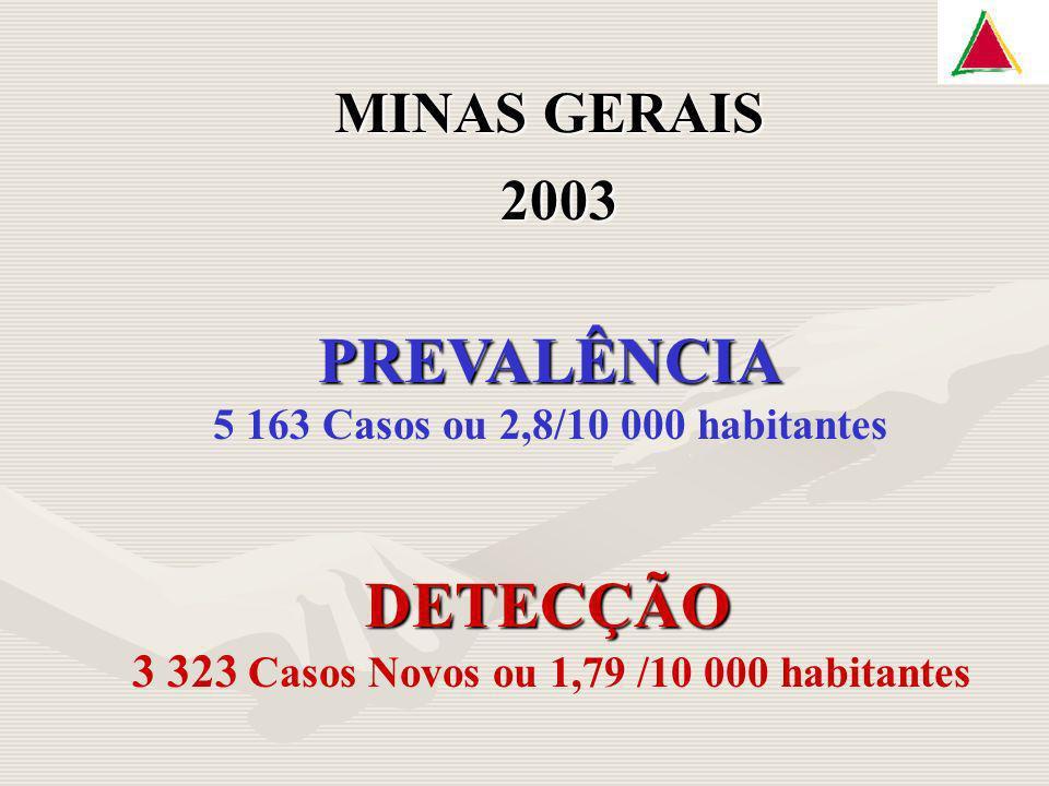 MINAS GERAIS 2003 DETECÇÃO 3 323 Casos Novos ou 1,79 /10 000 habitantes PREVALÊNCIA 5 163 Casos ou 2,8/10 000 habitantes