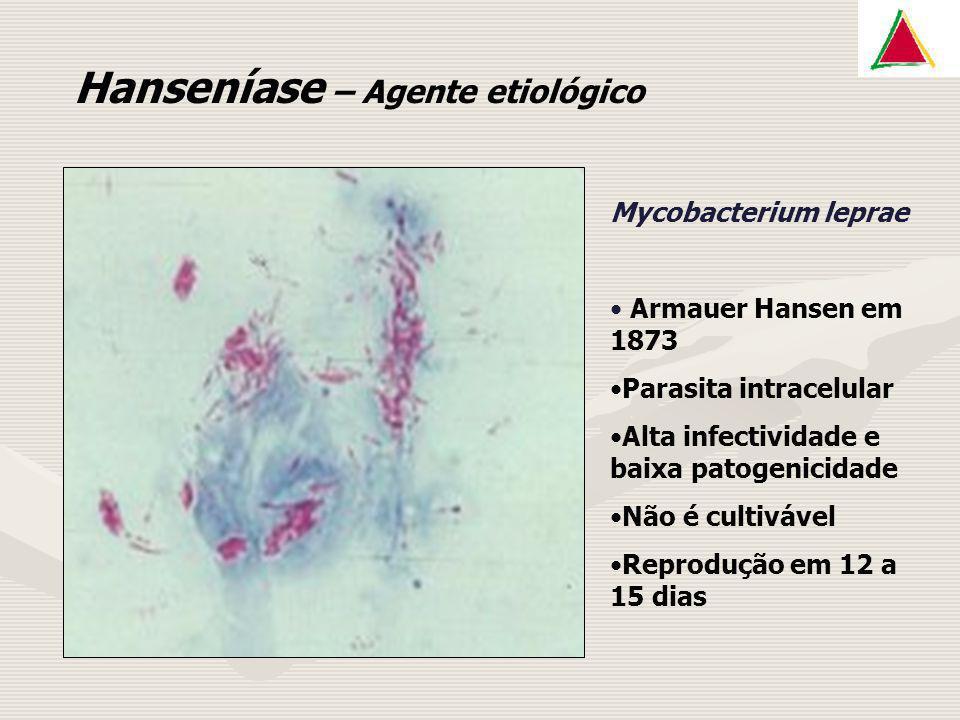 Hanseníase – Agente etiológico Mycobacterium leprae Armauer Hansen em 1873 Parasita intracelular Alta infectividade e baixa patogenicidade Não é culti