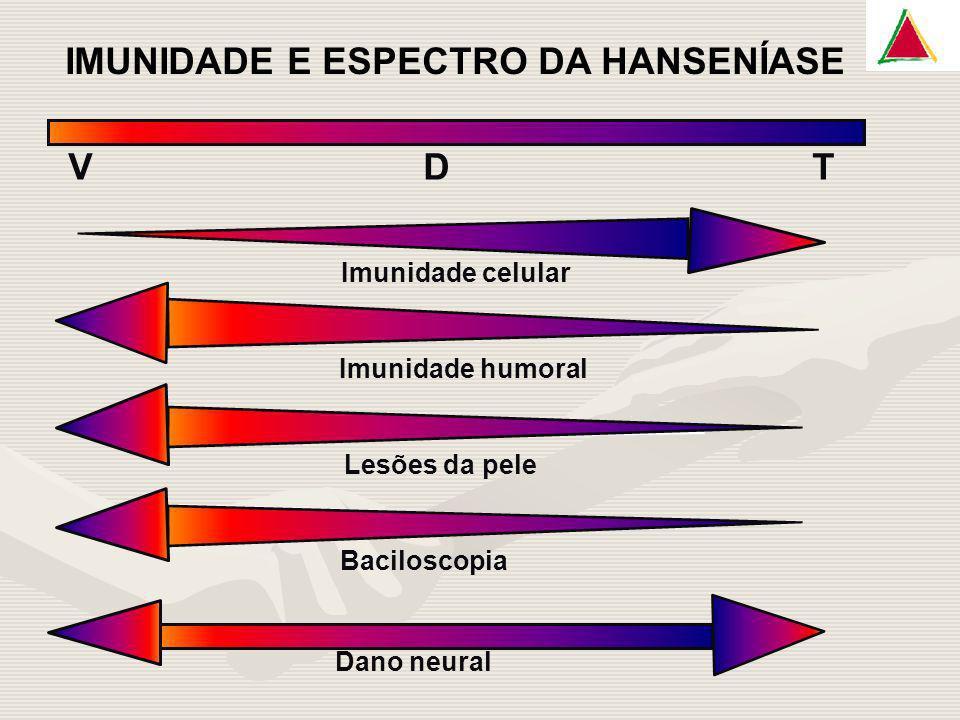 IMUNIDADE E ESPECTRO DA HANSENÍASE V D T Imunidade celular Imunidade humoral Lesões da pele Baciloscopia Dano neural
