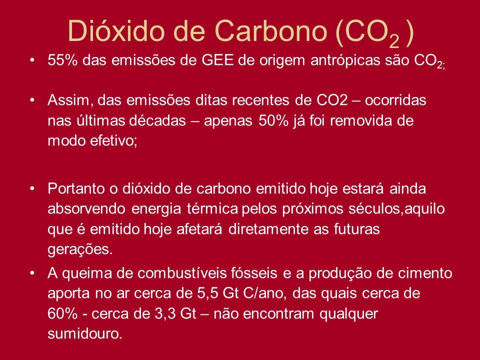 Dióxido de Carbono (CO 2 ) 55% das emissões de GEE de origem antrópicas são CO 2; Assim, das emissões ditas recentes de CO2 – ocorridas nas últimas dé