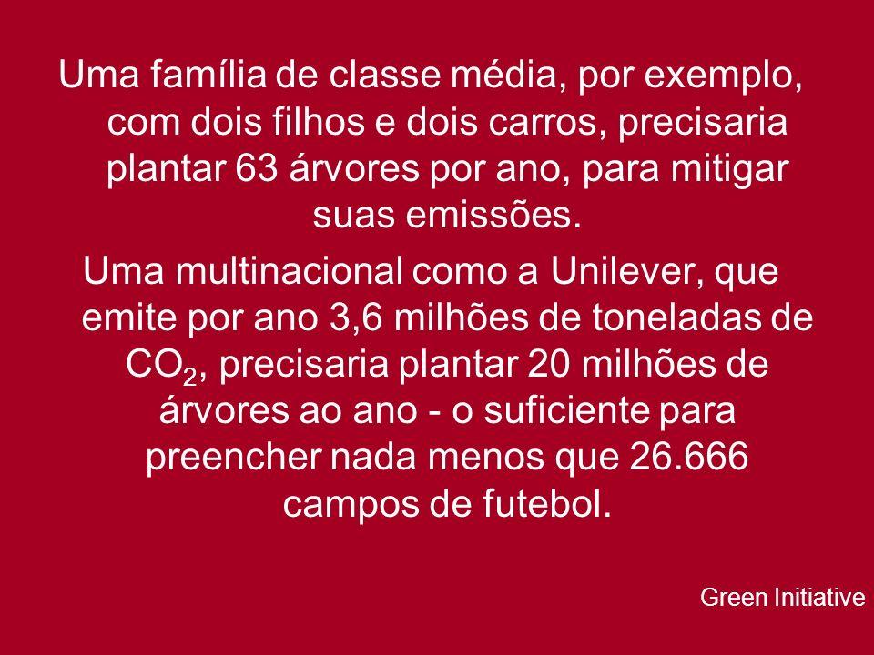 Uma família de classe média, por exemplo, com dois filhos e dois carros, precisaria plantar 63 árvores por ano, para mitigar suas emissões. Uma multin