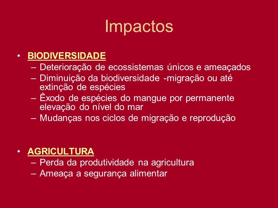 Impactos BIODIVERSIDADE –Deterioração de ecossistemas únicos e ameaçados –Diminuição da biodiversidade -migração ou até extinção de espécies –Êxodo de