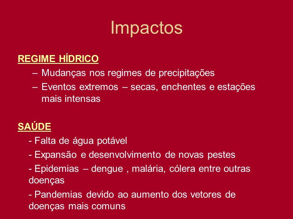 Impactos REGIME HÍDRICO –Mudanças nos regimes de precipitações –Eventos extremos – secas, enchentes e estações mais intensas SAÚDE - Falta de água pot
