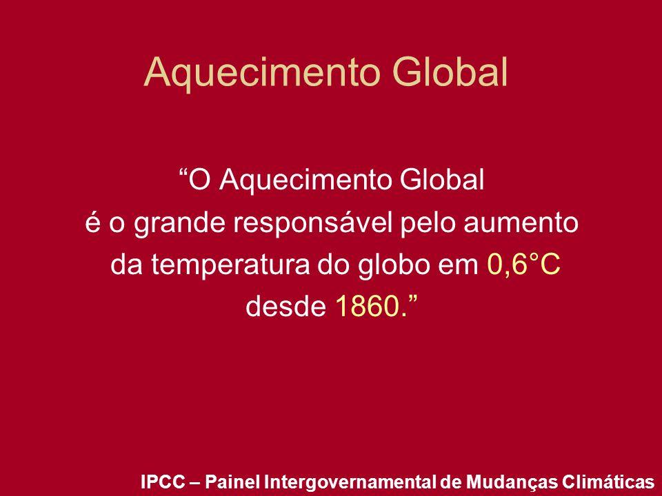 Aquecimento Global O Aquecimento Global é o grande responsável pelo aumento da temperatura do globo em 0,6°C desde 1860. IPCC – Painel Intergovernamen