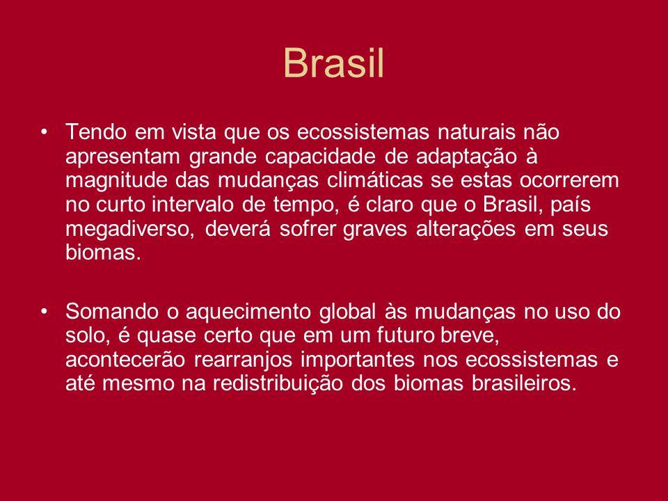 Brasil Tendo em vista que os ecossistemas naturais não apresentam grande capacidade de adaptação à magnitude das mudanças climáticas se estas ocorrere
