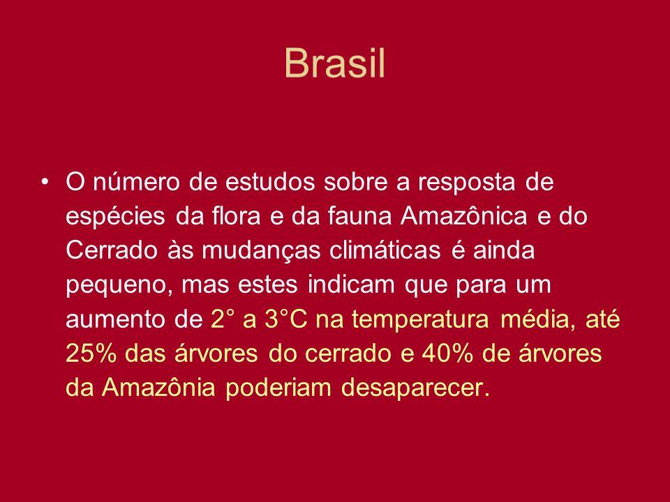 Brasil O número de estudos sobre a resposta de espécies da flora e da fauna Amazônica e do Cerrado às mudanças climáticas é ainda pequeno, mas estes i