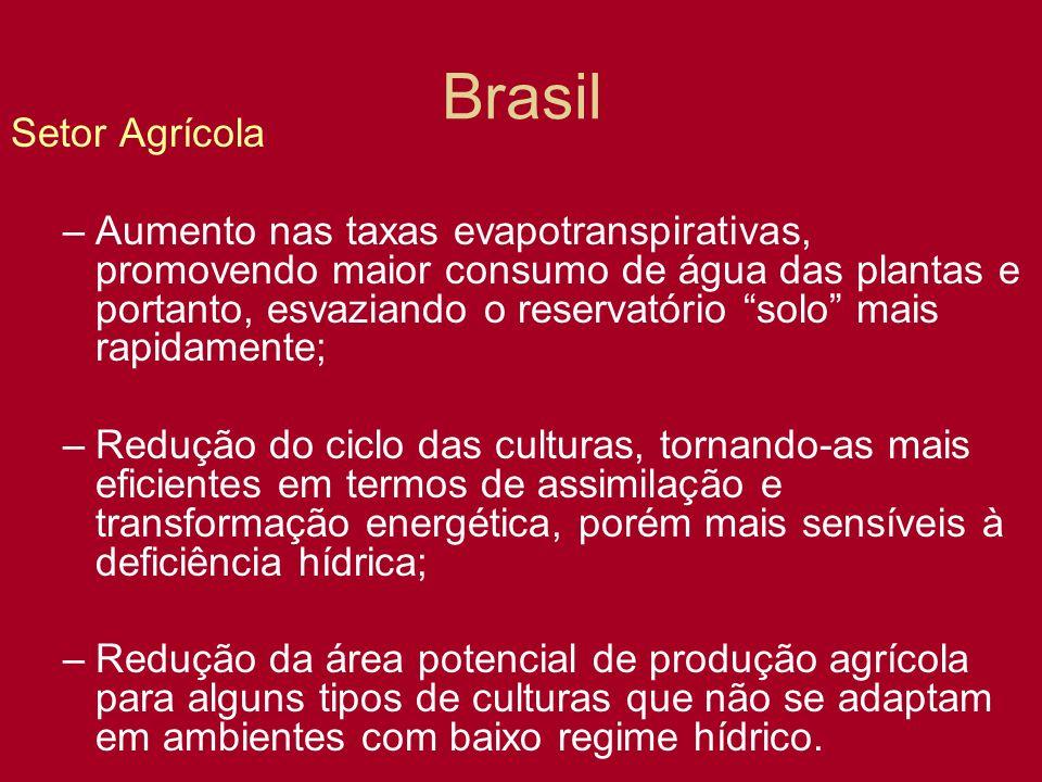 Brasil Setor Agrícola –Aumento nas taxas evapotranspirativas, promovendo maior consumo de água das plantas e portanto, esvaziando o reservatório solo
