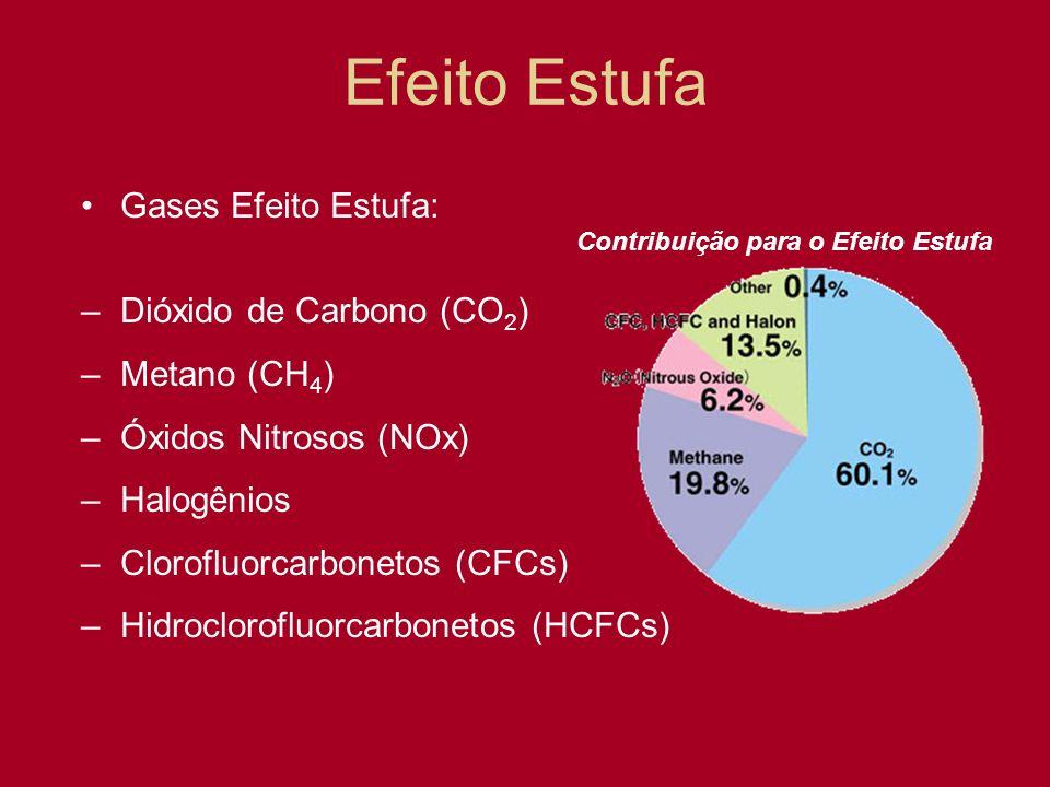 Efeito Estufa Gases Efeito Estufa: –Dióxido de Carbono (CO 2 ) –Metano (CH 4 ) –Óxidos Nitrosos (NOx) –Halogênios –Clorofluorcarbonetos (CFCs) –Hidroc