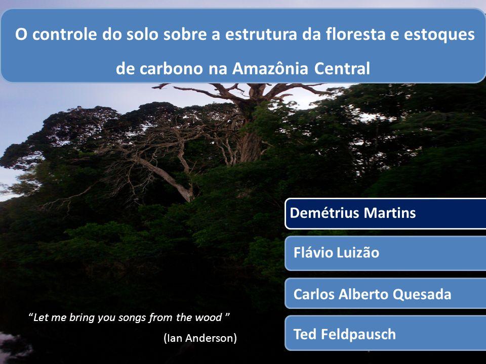 1 O controle do solo sobre a estrutura da floresta e estoques de carbono na Amazônia Central Demétrius Martins Flávio Luizão Carlos Alberto Quesada Ted Feldpausch Let me bring you songs from the wood (Ian Anderson))