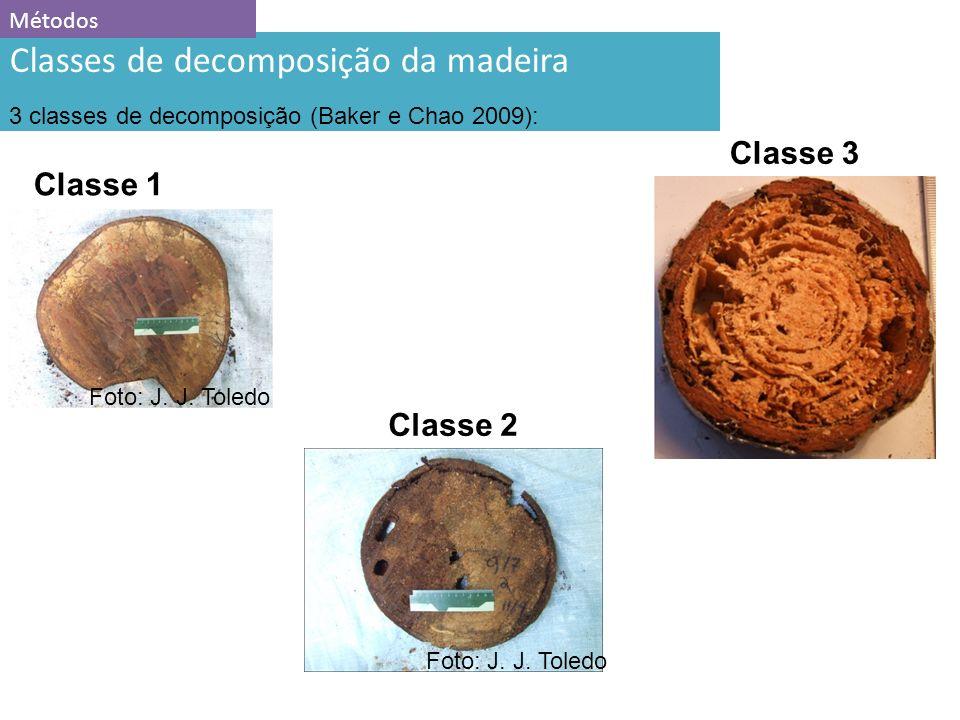 11 Classes de decomposição da madeira 3 classes de decomposição (Baker e Chao 2009): Classe 1 Classe 2 Métodos Classe 3 Foto: J.