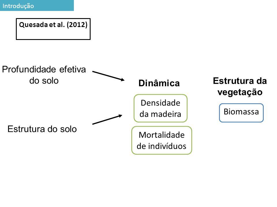 27 Preditores de necromassa ao longo da paisagem Sem restrição Baixo nível de restrição Alto nível de restrição r2adj=0,20 P<0,001 O parâmetro da vegetação que melhor explicou a variação de necromassa Resultados e discussão