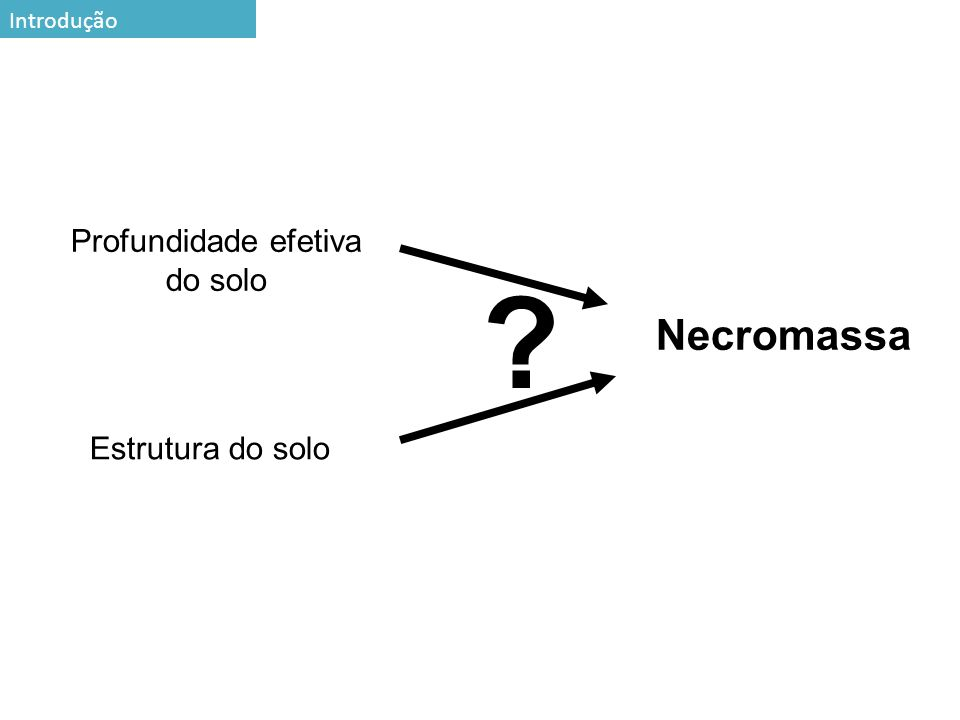 7 Profundidade efetiva do solo Estrutura do solo Necromassa ? Introdução