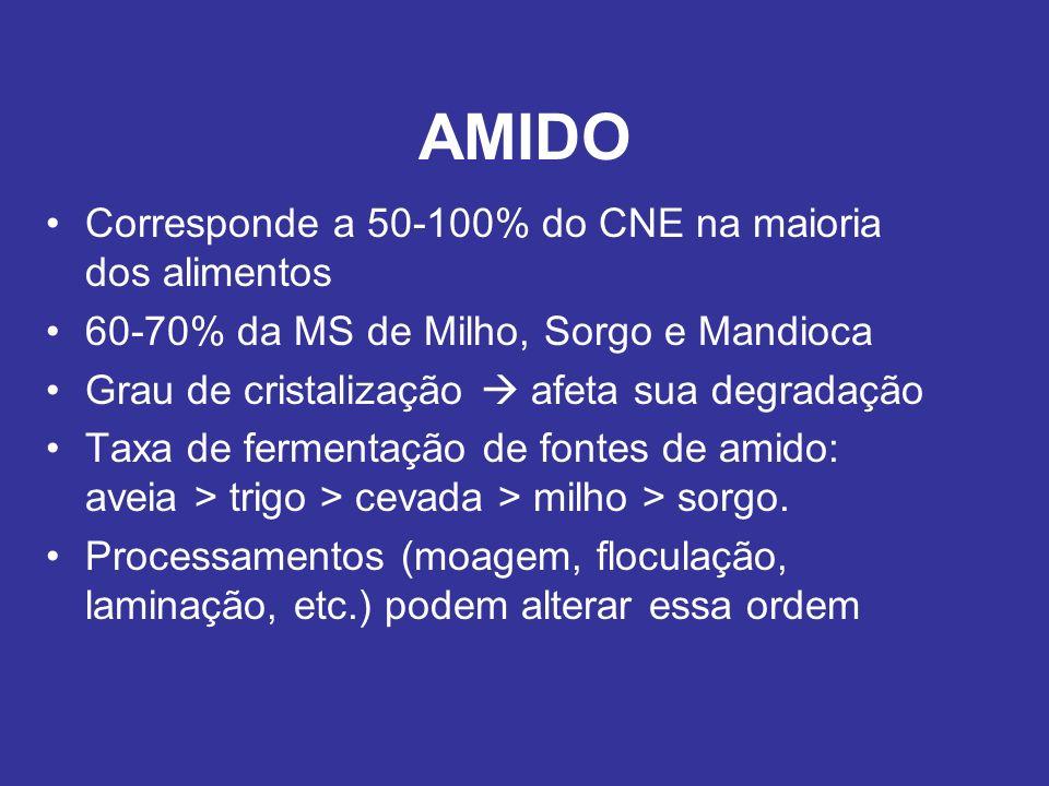 AMIDO Corresponde a 50-100% do CNE na maioria dos alimentos 60-70% da MS de Milho, Sorgo e Mandioca Grau de cristalização afeta sua degradação Taxa de