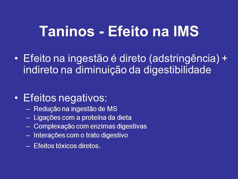 Taninos - Efeito na IMS Efeito na ingestão é direto (adstringência) + indireto na diminuição da digestibilidade Efeitos negativos: –Redução na ingestã