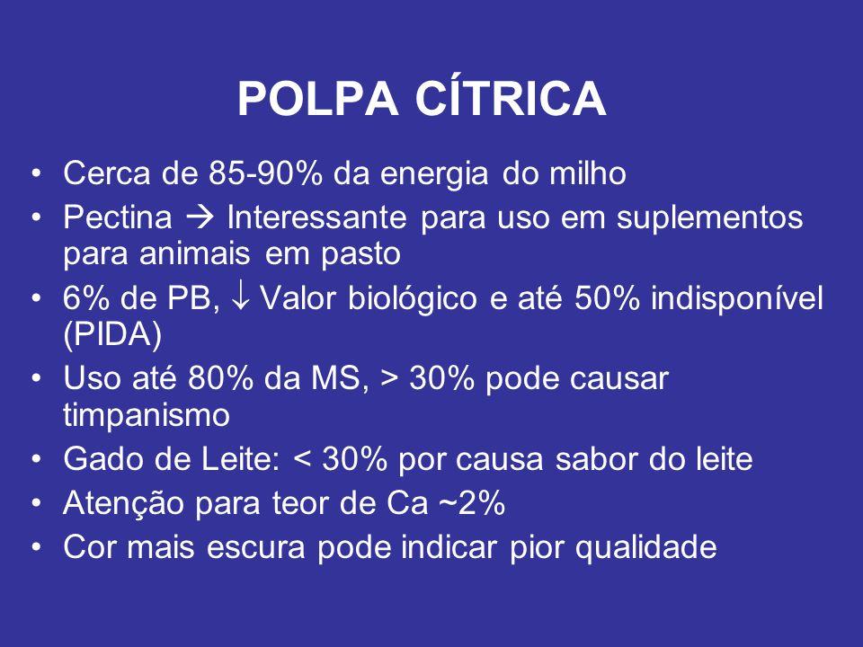 POLPA CÍTRICA Cerca de 85-90% da energia do milho Pectina Interessante para uso em suplementos para animais em pasto 6% de PB, Valor biológico e até 5