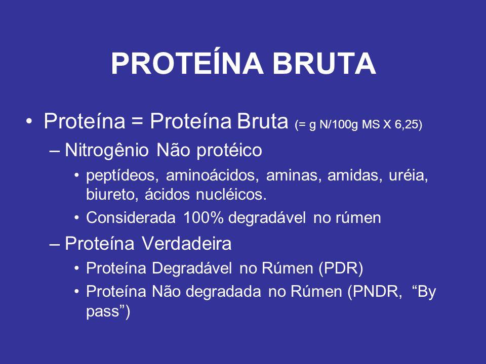 PROTEÍNA BRUTA Proteína = Proteína Bruta (= g N/100g MS X 6,25) –Nitrogênio Não protéico peptídeos, aminoácidos, aminas, amidas, uréia, biureto, ácido