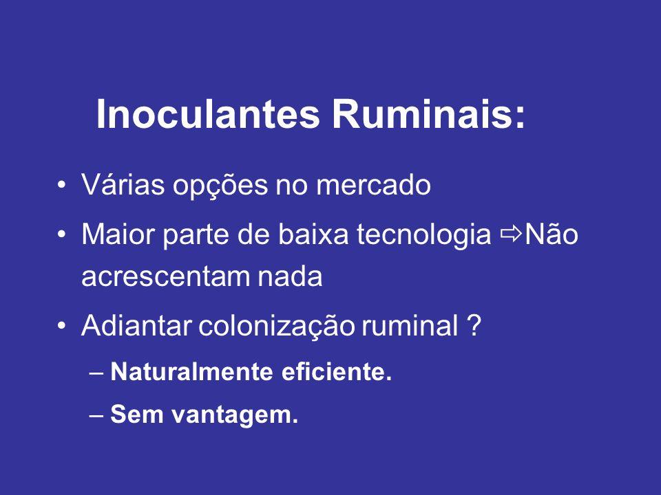 Inoculantes Ruminais: Várias opções no mercado Maior parte de baixa tecnologia Não acrescentam nada Adiantar colonização ruminal ? –Naturalmente efici