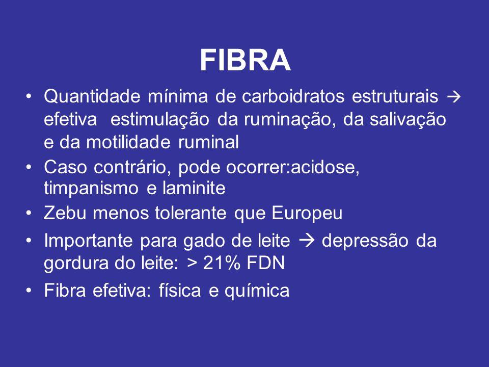 FIBRA Quantidade mínima de carboidratos estruturais efetiva estimulação da ruminação, da salivação e da motilidade ruminal Caso contrário, pode ocorre