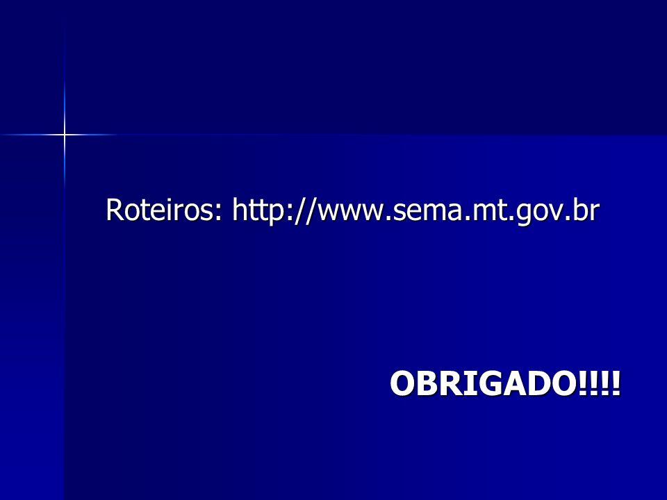 Roteiros: http://www.sema.mt.gov.br OBRIGADO!!!!